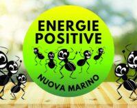 La carica delle Formiche: ecco la Lista Civica Energie Positive per una Nuova Marino
