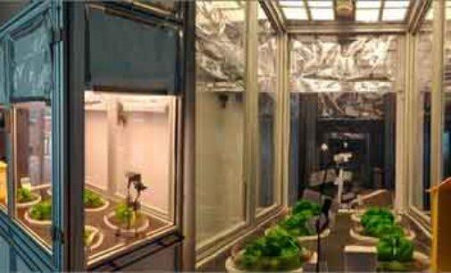 Innovazione: sistemi di illuminazione OLED per l'agricoltura del futuro
