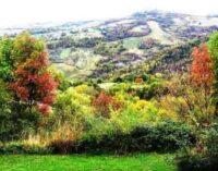 Bioregionalismo – Un esperimento alchemico tra ecologia e spiritualità