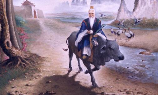 Oroscopo cinese. Entriamo nell'anno del Bufalo di Metallo