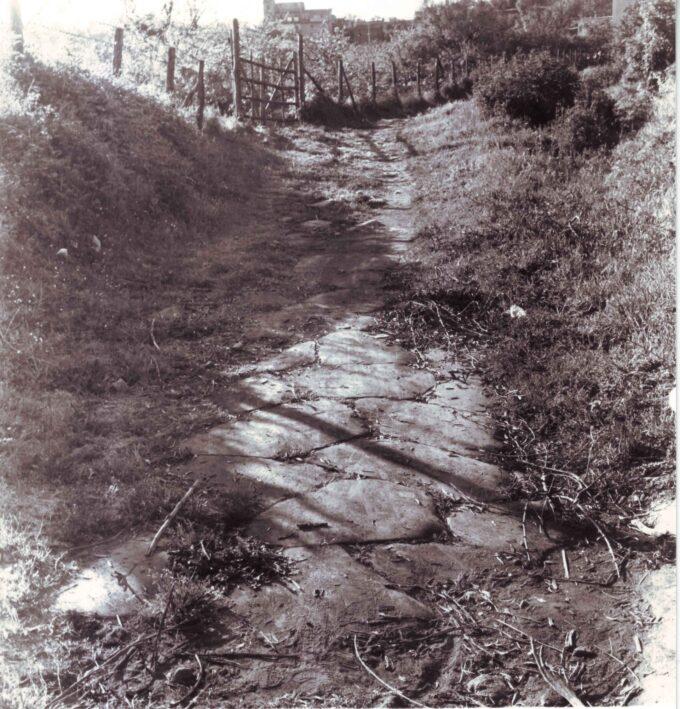 Ariccia: le nuove scoperte al XVI miglio dell'Appia Antica
