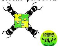 Ancora un sabato sera con le formiche a Marino