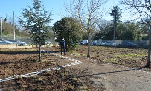 Aree verdi a Pomezia, al via i lavori di riqualificazione a Campo Jemini