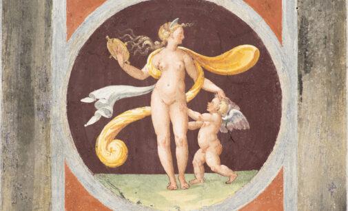 Venere. Natura Ombra Bellezza