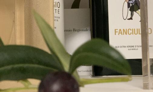 Tre nuovi racconti e luoghi che faranno parte degli itinerari oleoturistici in Umbria