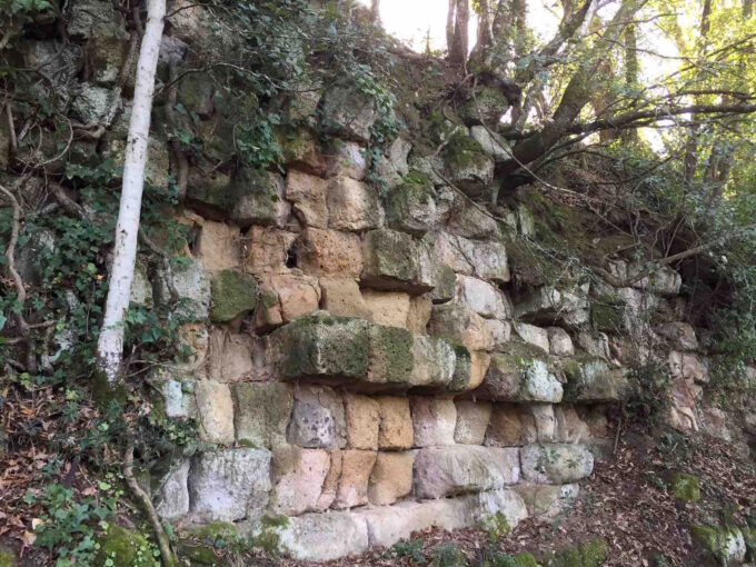 Archeologia e antropologia. La mitica Fescennium sparita e ritrovata