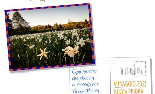 Rocca Priora celebra l'82ª Festa del Narciso