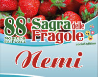 """Nemi al via l' 88° edizione della Sagra delle Fragole """"social"""""""