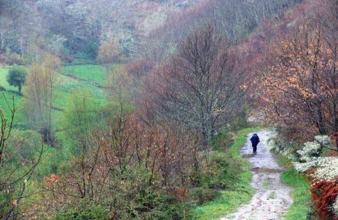 Bioregionalismo: una Via senza via…