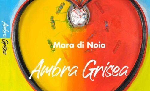 """""""Ambra Grisea"""", romanzo di Mara di Noia"""