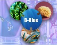 Ambiente: mare, Italia nel progetto da 1,5 milioni di euro per l'hub delle 'biotecnologie blu'