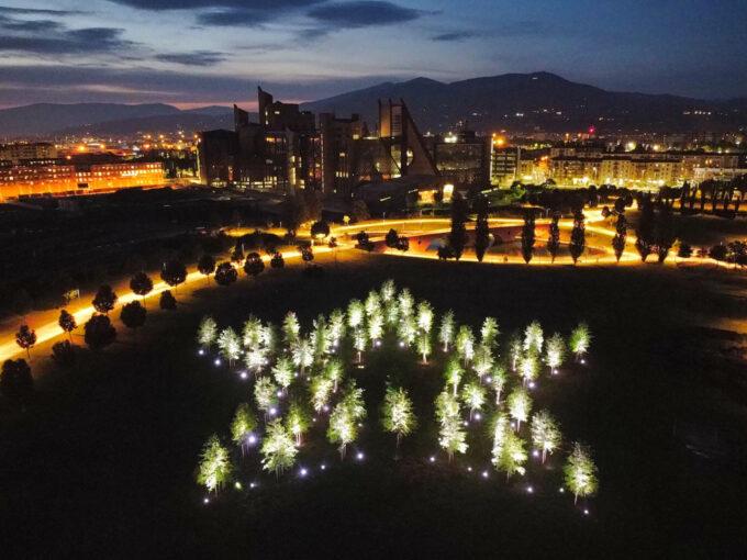 """La Stella di Dante   un'installazione ambientale """"vivente"""" donata a Firenze per celebrare il Sommo Poeta"""