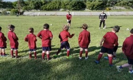 """Sporting Ariccia, la Scuola calcio è viva. Marinangeli: """"Bambini e famiglie sono soddisfatti"""""""