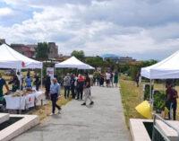 Cresce il numero dei visitatori al Parco Archeologico di Ercolano