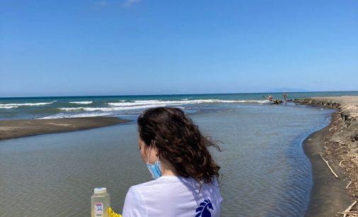 I risultati delle analisi dei campioni d'acqua prelevati dai volontari e volontarie di Goletta Verde sulle coste laziali