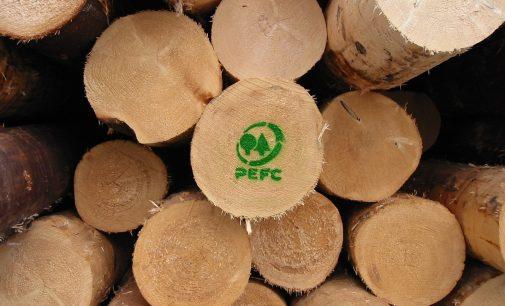 PEFC Italia festeggia 20 anni dalla parte delle foreste