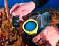 Ambiente: Giornata del Mediterraneo, una rete di termometri per misurare la 'febbre' del mare
