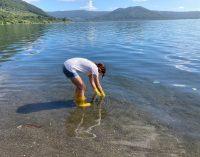 Il monitoraggio di Goletta dei Laghi di Legambiente sui laghi laziali