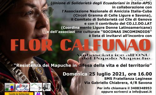 La Resistenza Mapuche