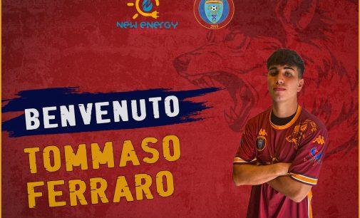 Rinforzo in quota under per la Lupa Frascati, Tommaso Ferraro è un nuovo giocatore amarantoblu.