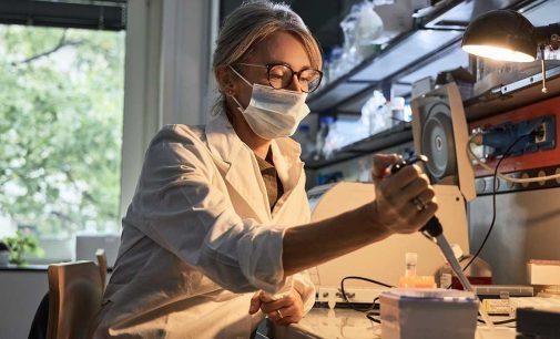 Il valore della ricerca L'ICGEB e gli studi sul cancro in un'ottica multidisciplinare