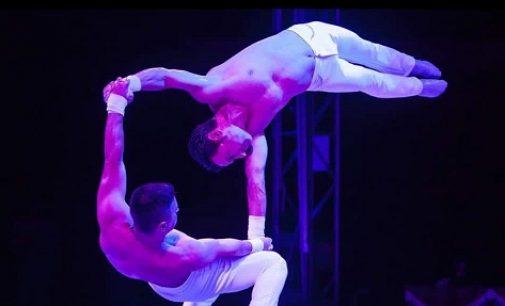 Isernia: grande spettacolo con Il Circo Royal