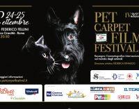 Pet Carpet Film Festival  quarta edizione