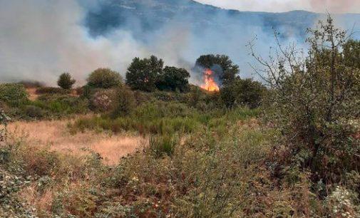 Incendio tra Monte Tuscolo, Pratarena e San Silvestro