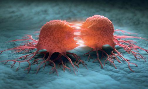 Ricerca cancro. Al webinar Italia-Giappone il nobel per la medicina 2018, Prof. Tasuku Honjo